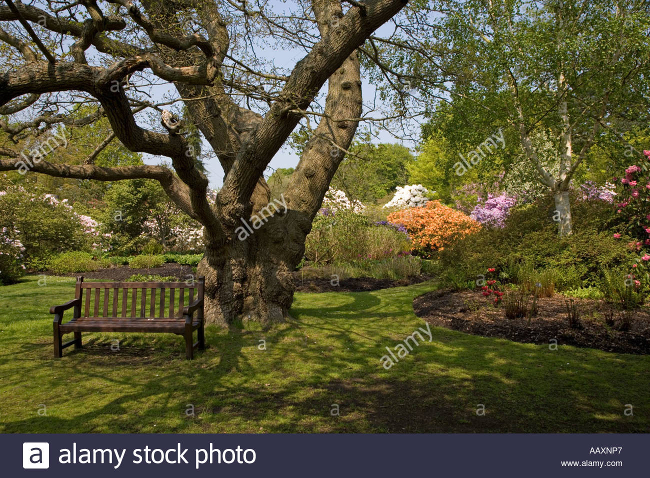 Funky Berkshires At Windsor Gardens Ideas - Brown Nature Garden ...