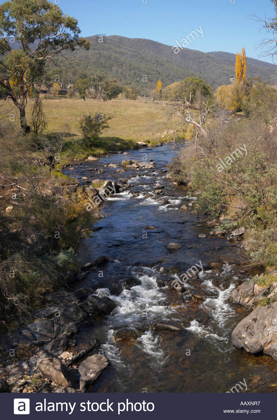 The Goodradigbee River near Brindabella Station in the High Country of New South Wales Australia - Stock Image