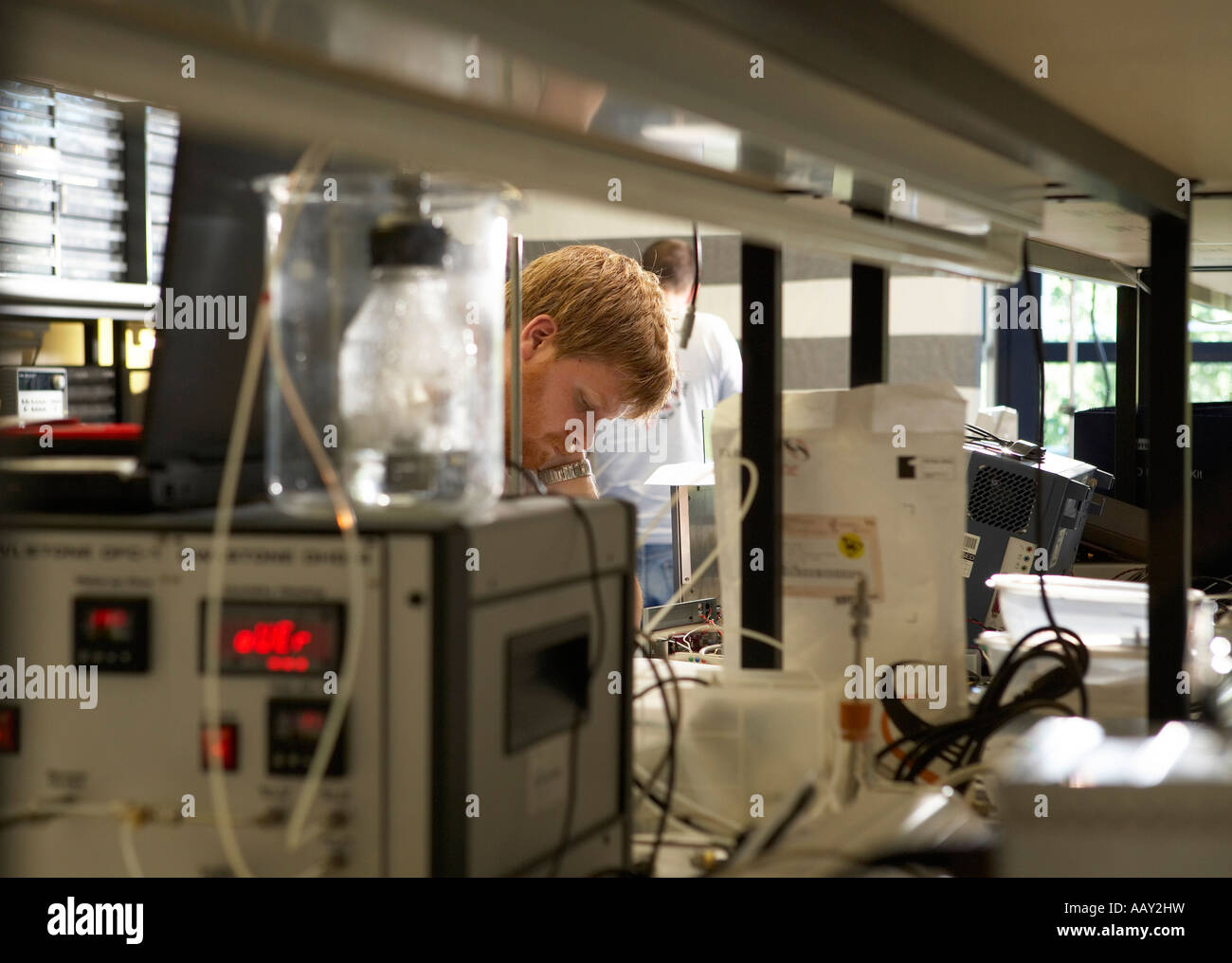 Scientist working in a laboratory - Stock Image