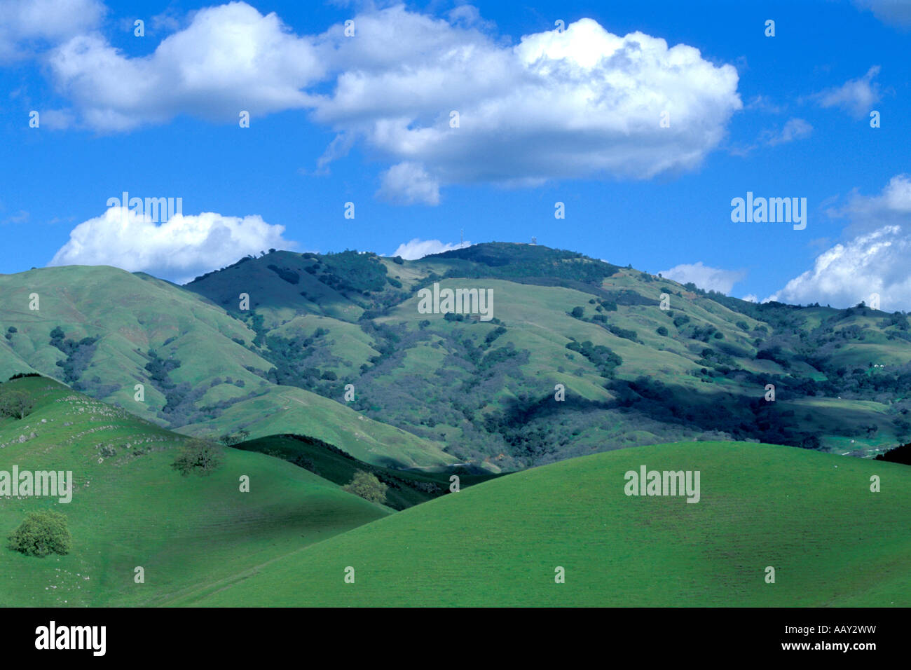clean air over green hills in danville california showing mount