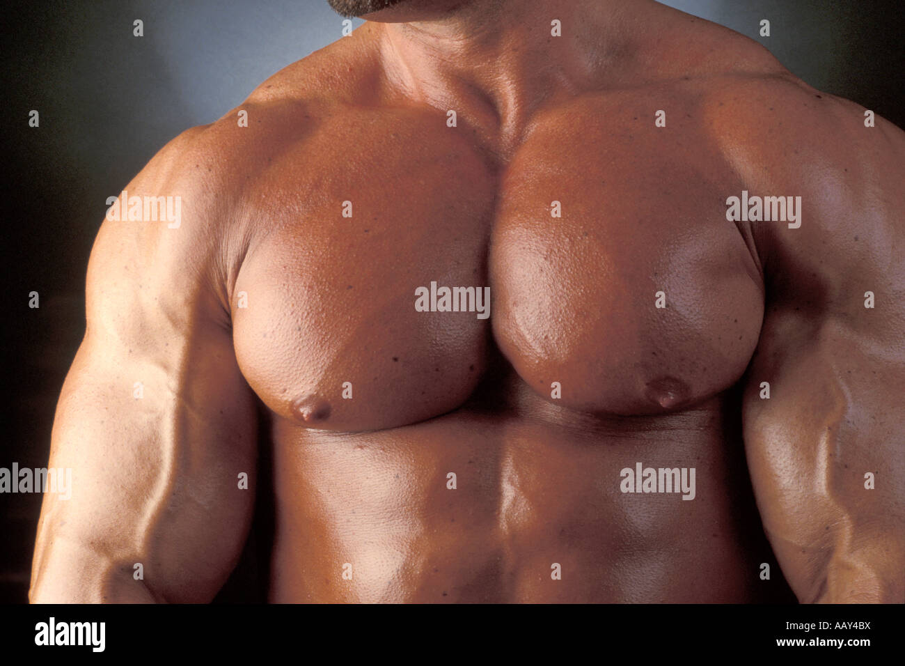Muscular Muscle Man With Big Bulging Pectorial Muscles And Chest