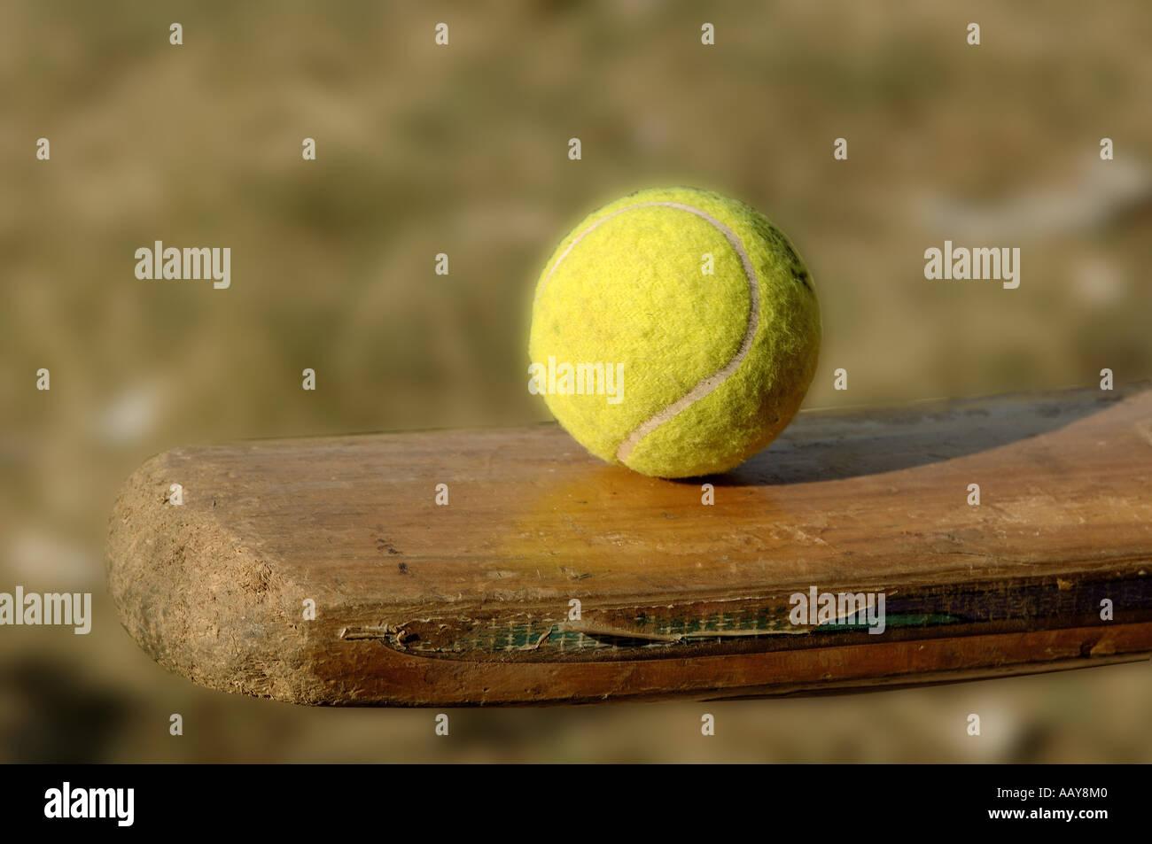 Hma78723 Tennis Ball Balancing On Surface Of Cricket Bat Stock Photo