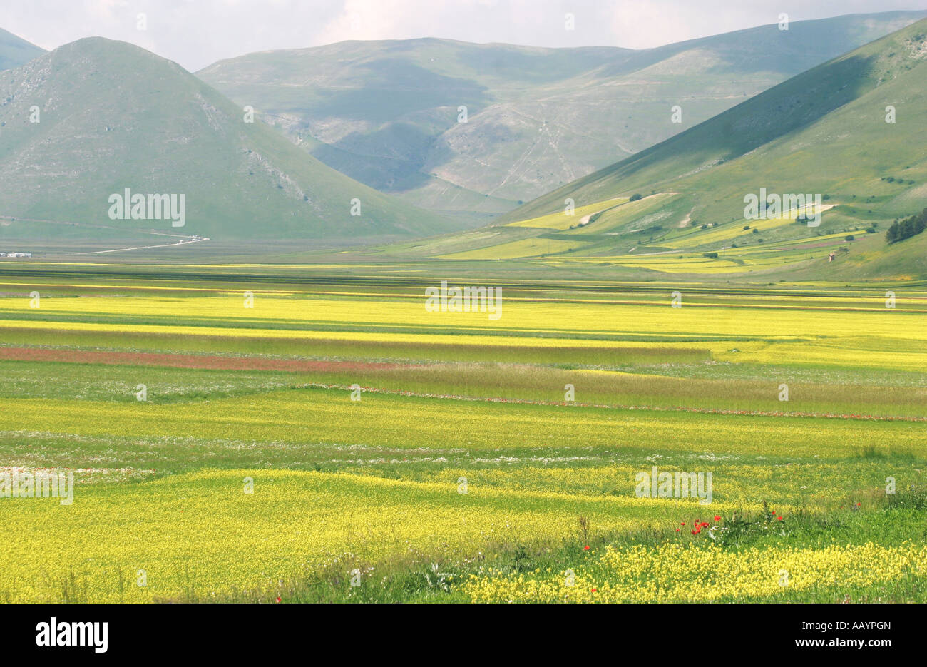 Tourings Stock Photos & Tourings Stock Images - Alamy