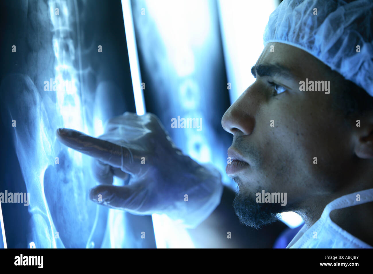 Doctor examines x rays - Stock Image