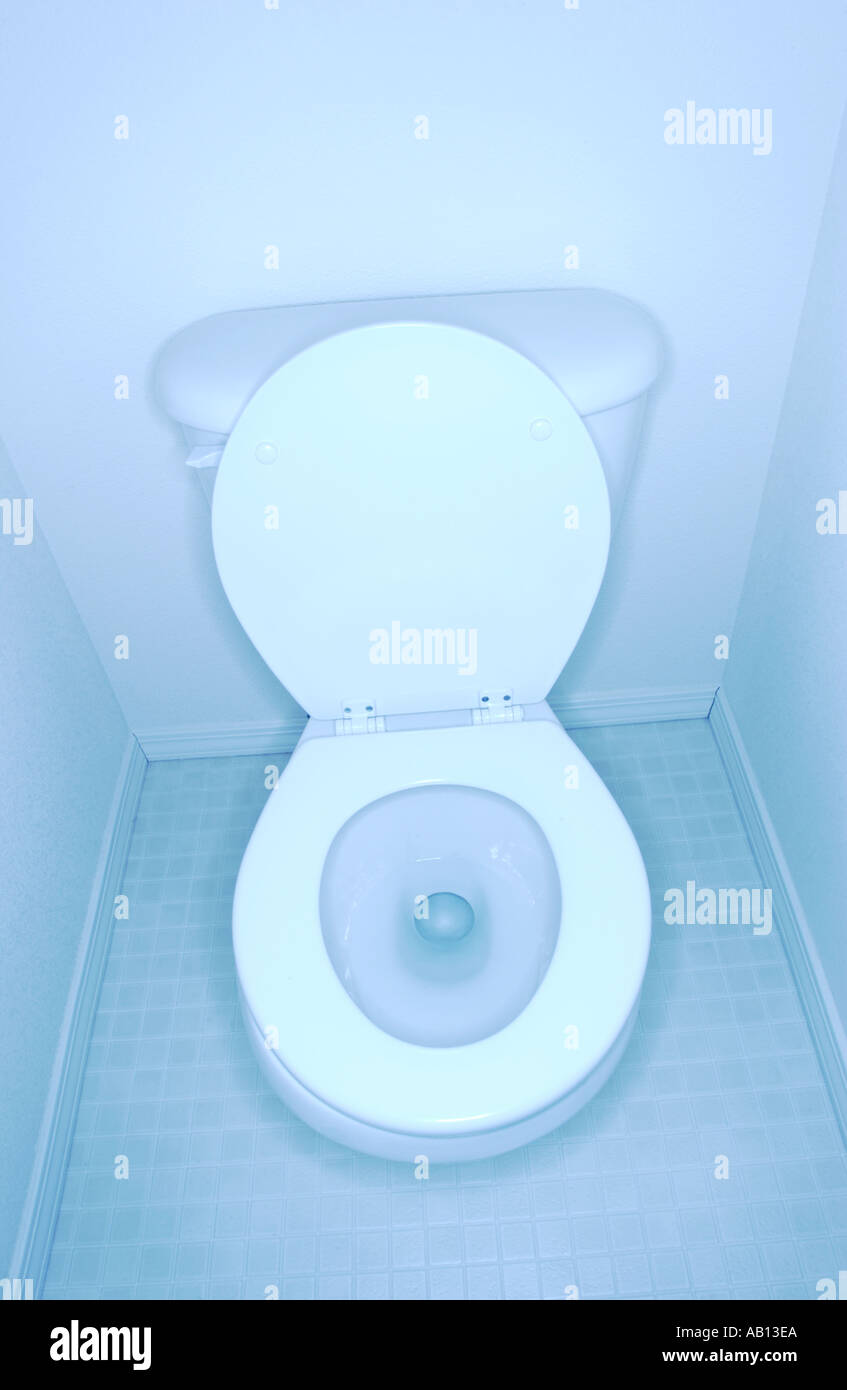 Toilet - Stock Image