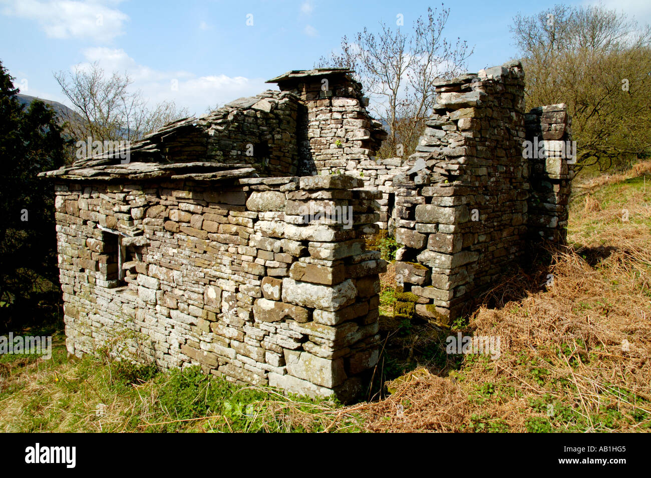 Derelict stone built farmstead on walking footpath in the Vale of Ewyas near Llanthony Priory Monmouthshire South East Wales UK - Stock Image
