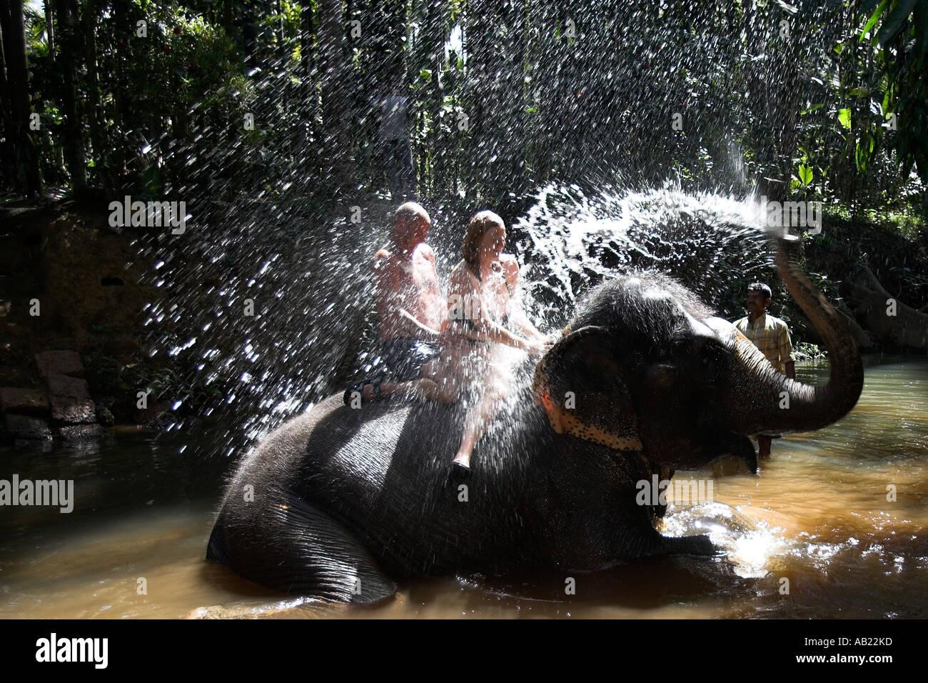 Tourists enjoy elephant shower at Sahakari Spice Farm Ponda Goa India - Stock Image