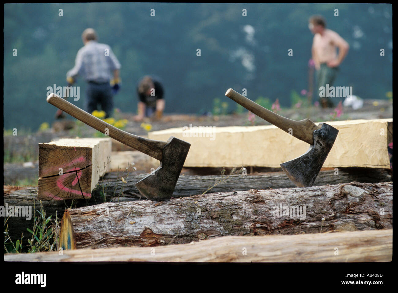 A pair of Old English logging axes used to cut and shape wood in the process of building wooden framed buildings Stock Photo