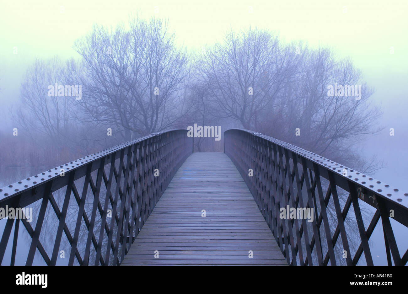 Bridge leading into foggy trees - Stock Image