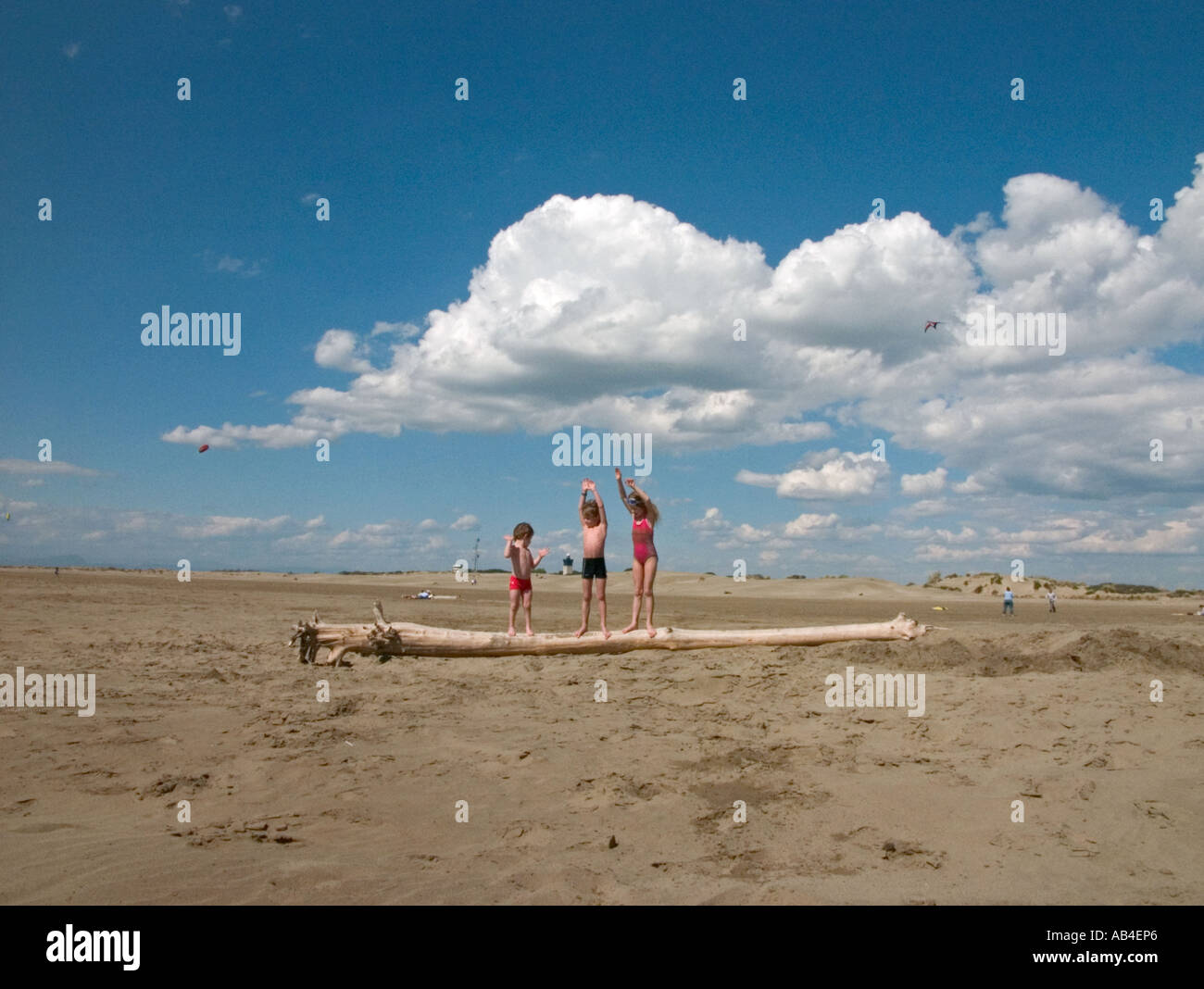 Three children playing on a washed up tree trunk in  the Camargue, France - Stock Image
