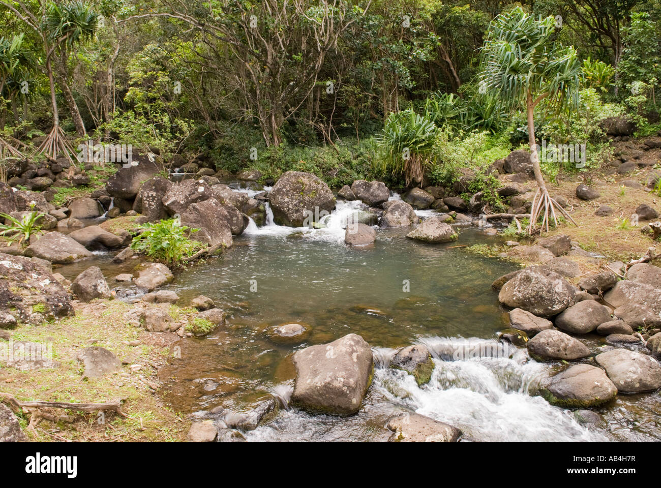 Limahuli Stream Limahuli Garden and Preserve National Tropical Stock ...