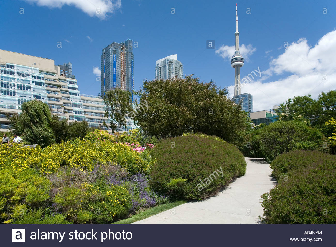 The Music Garden at Harbourfront Toronto Ontario Canada - Stock Image
