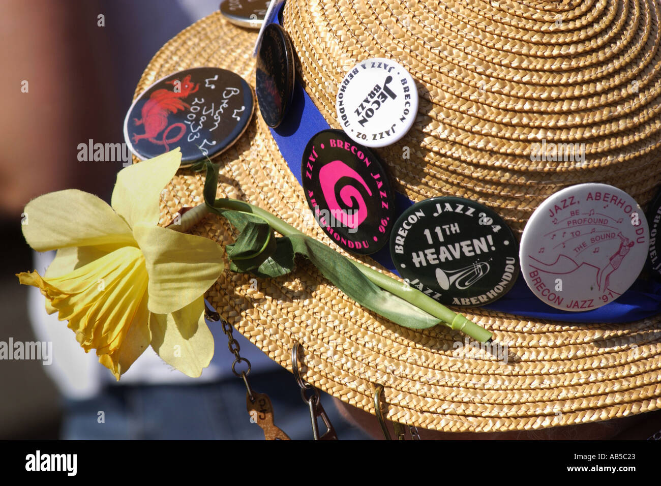 Jazz  fan wearing straw boater with badges and daffodil at the annual Brecon Jazz Festival Powys Mid Wales UK - Stock Image
