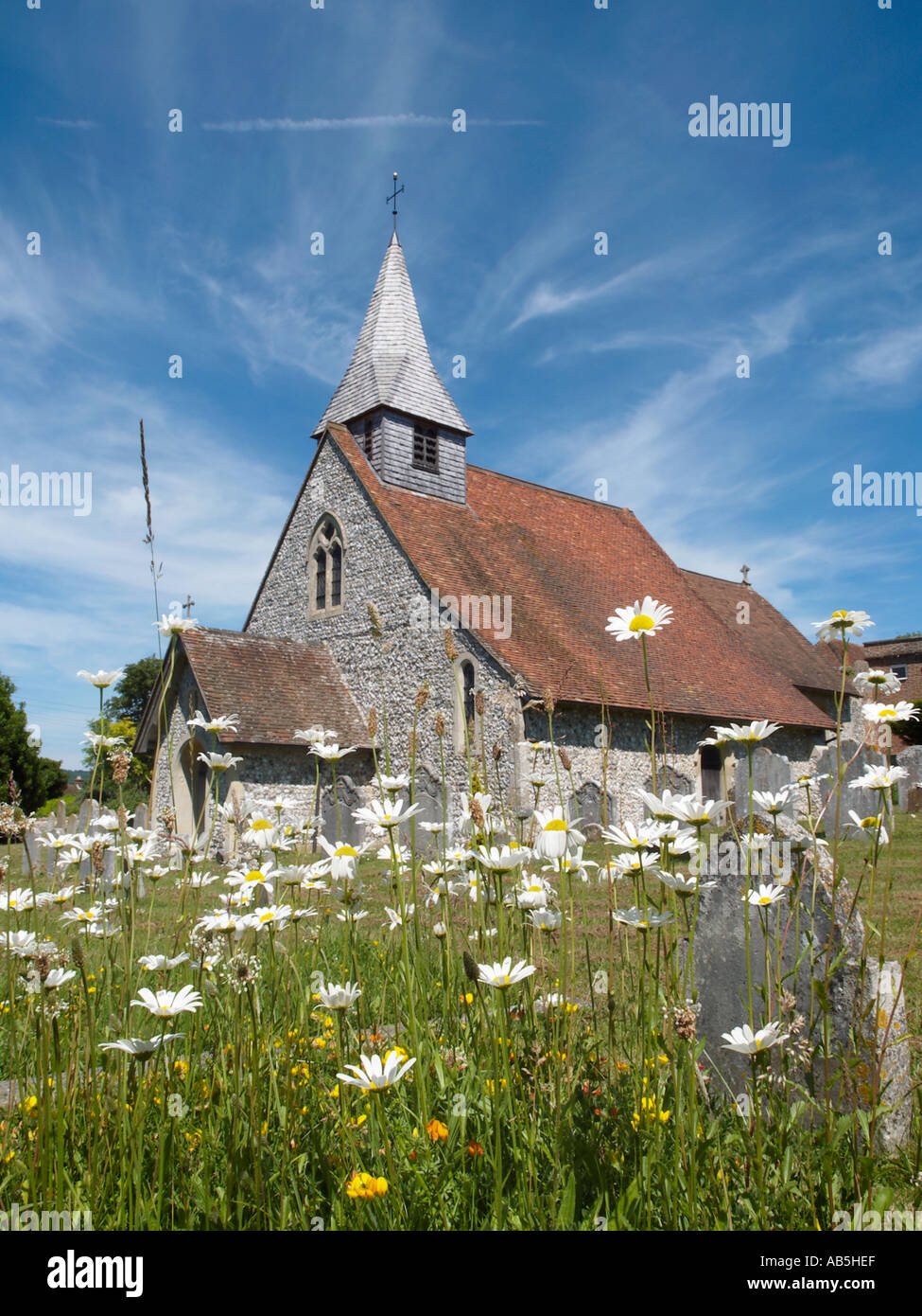 PARISH CHURCH of ST MARGARETS with Oxeye Daisies Eartham West Sussex England UK Stock Photo