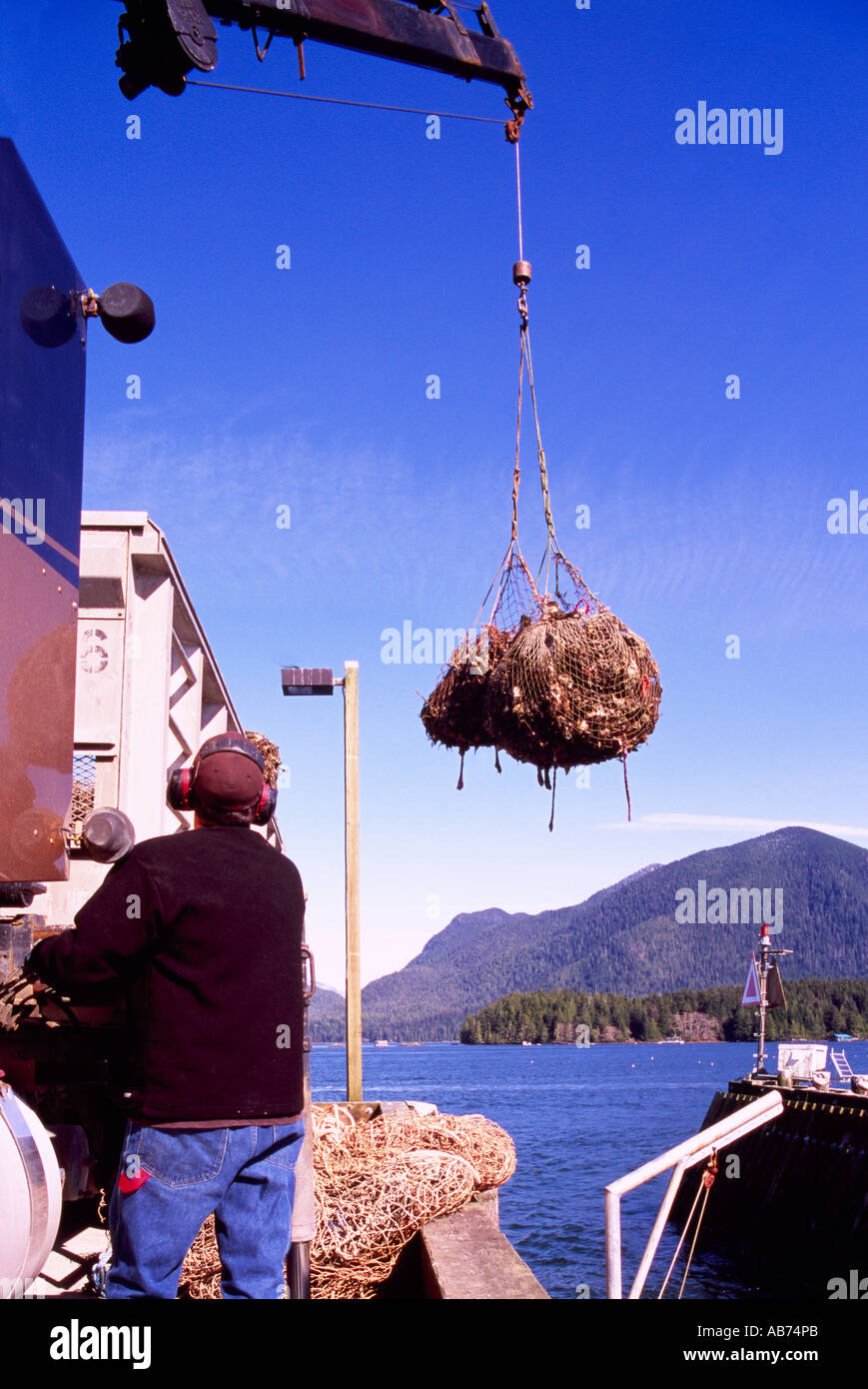 Tofino, BC, Vancouver Island, British Columbia, Canada - Oyster Farmer unloading local Farm Fresh Oysters from Clayoquot Sound - Stock Image