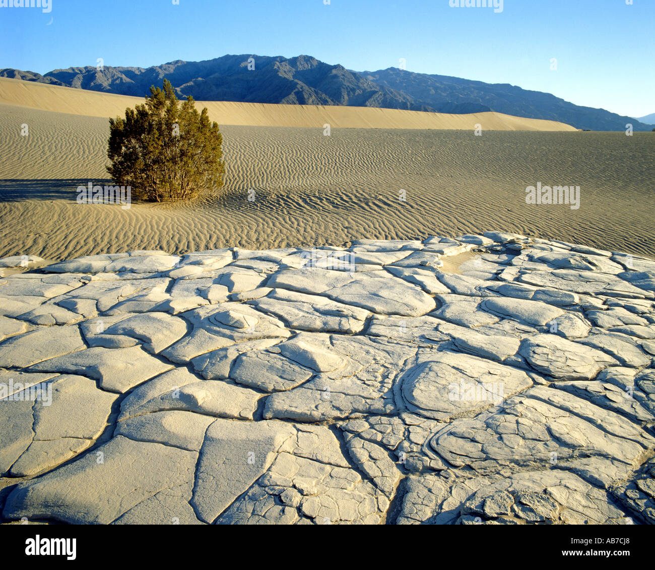 USA - CALIFORNIA:  Death Valley National Park - Stock Image
