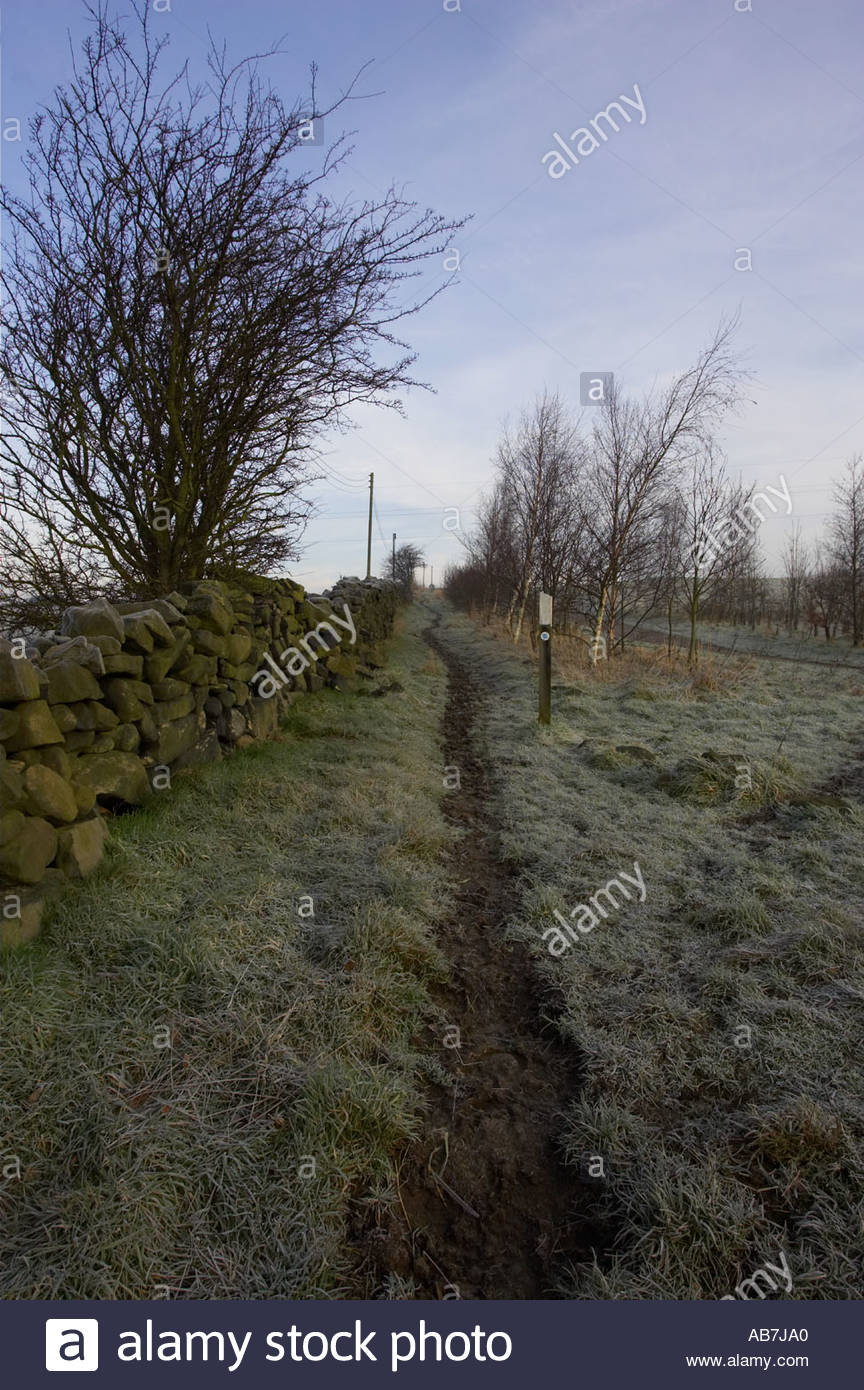 Footpath and Drystone Wall Yorkshire - Stock Image