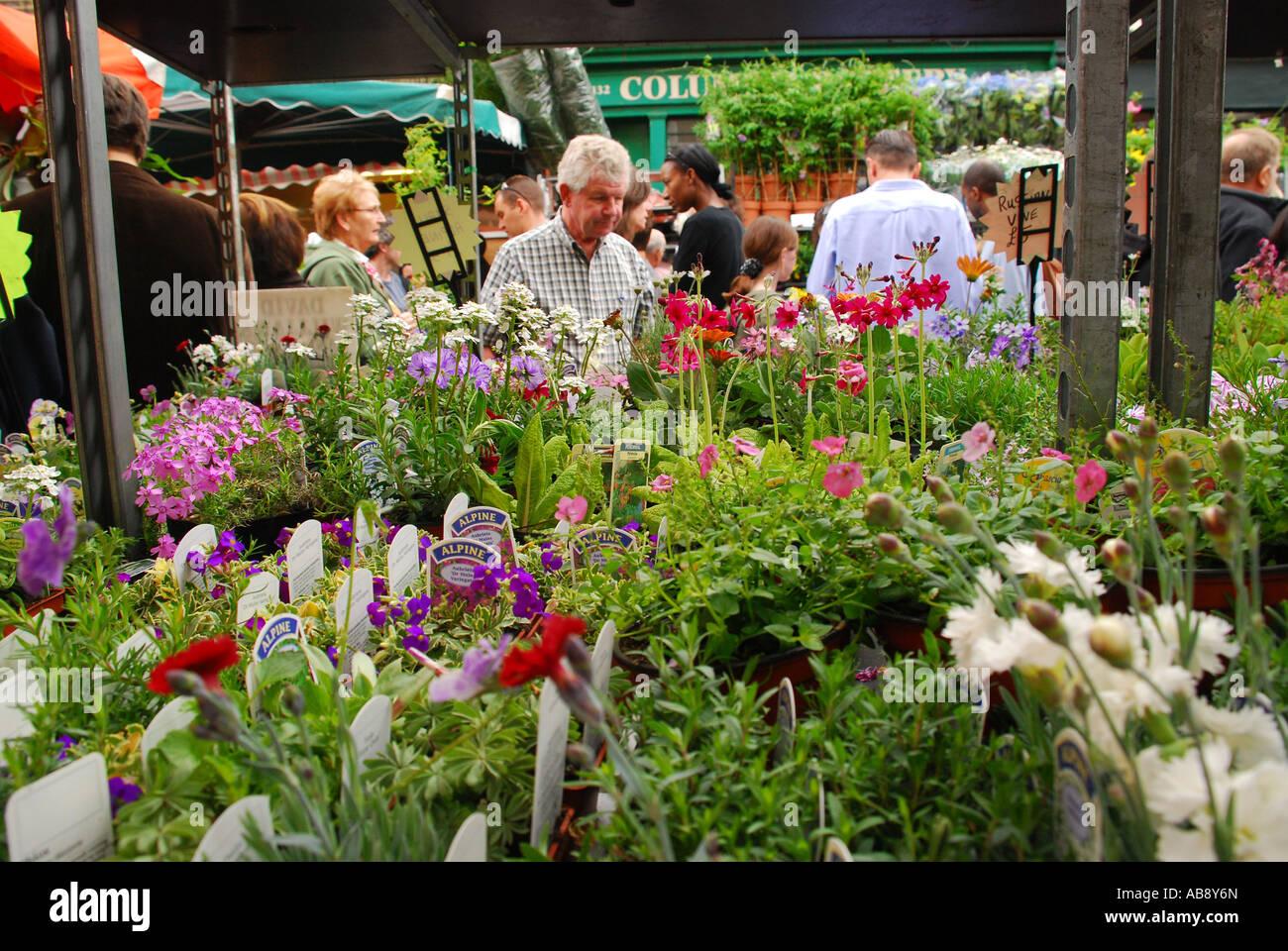 Columbia Road Flower Market London UK - Stock Image
