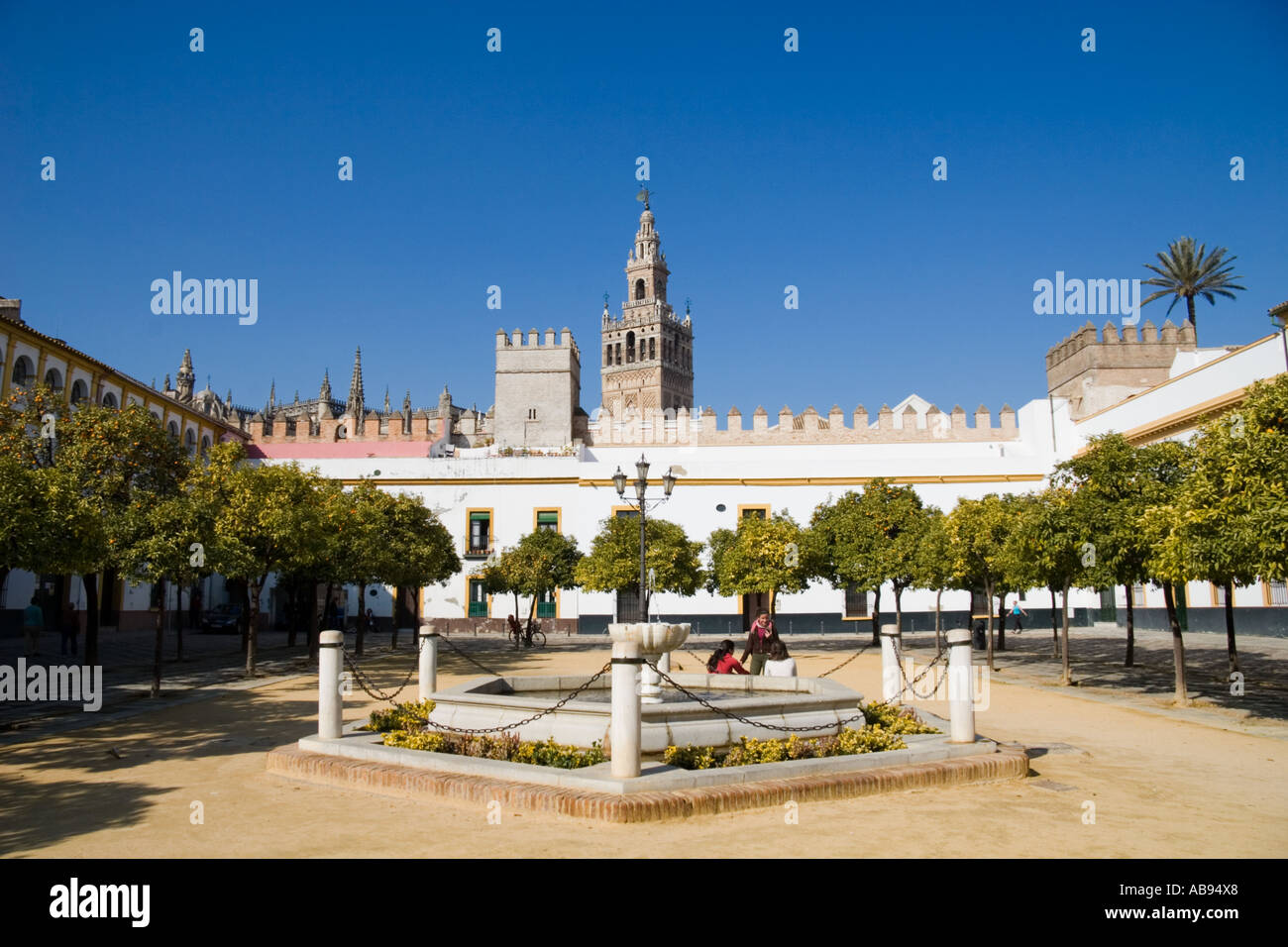 Orange Trees Line The Patio De Las Banderas With The Giralda In The