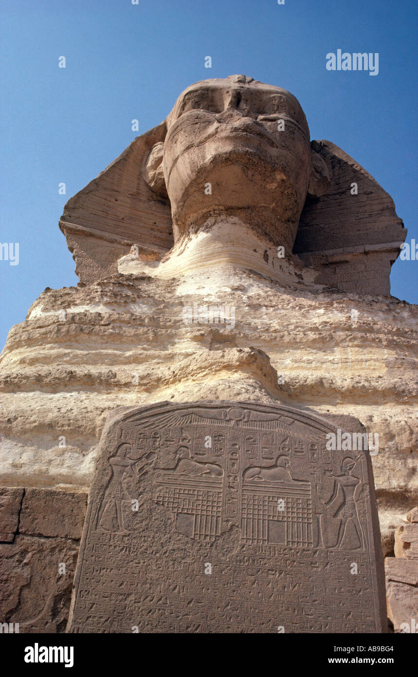 Egypt. Cairo. Giza.  The Sphinx of Giza with inscription in front.  Unusual angle. - Stock Image