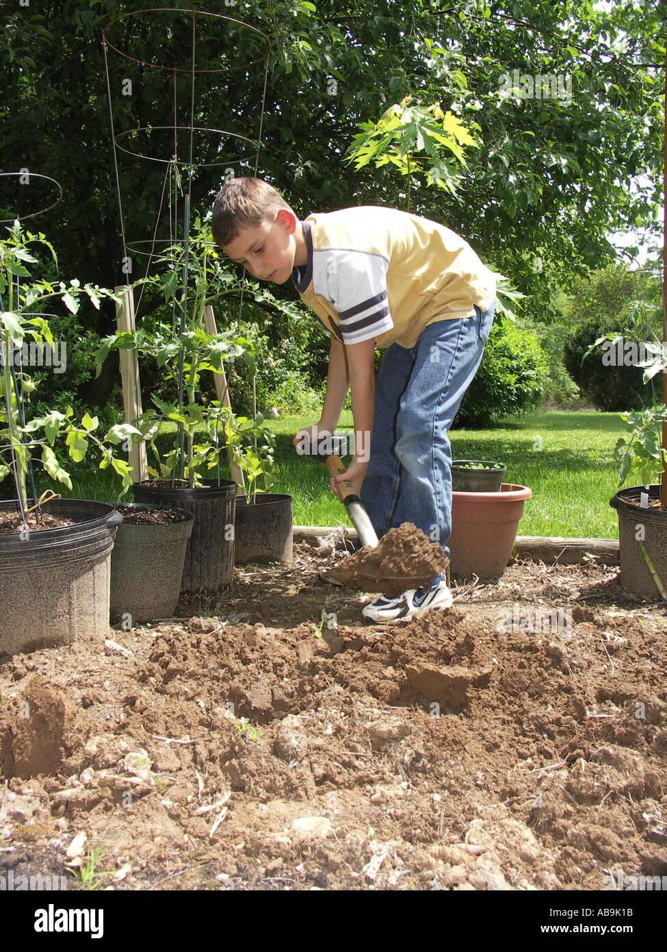 Digging in Garden Stock Photo