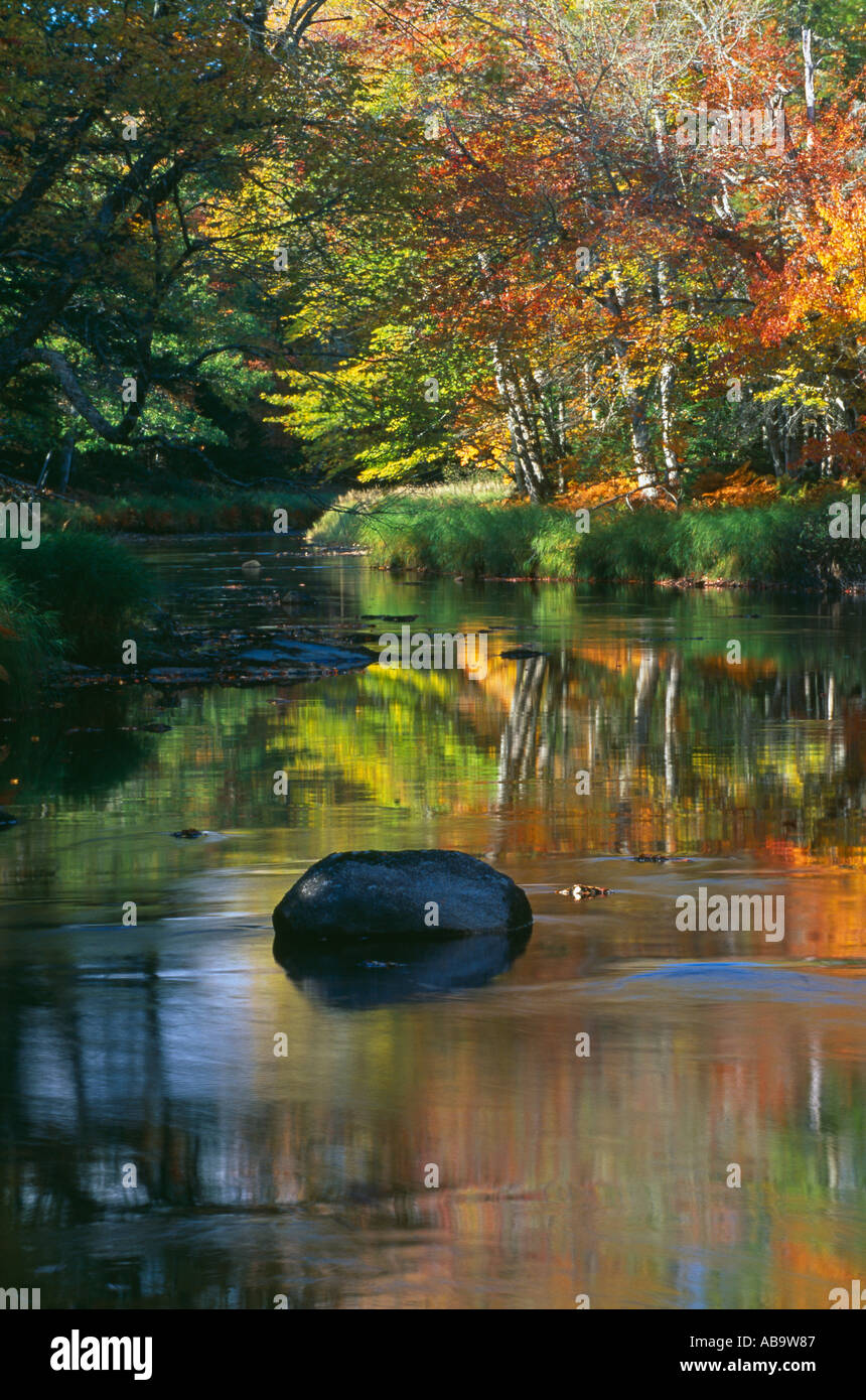 Autumn Mersey River nr Kejimkujik National Park Nova Scotia Canada - Stock Image
