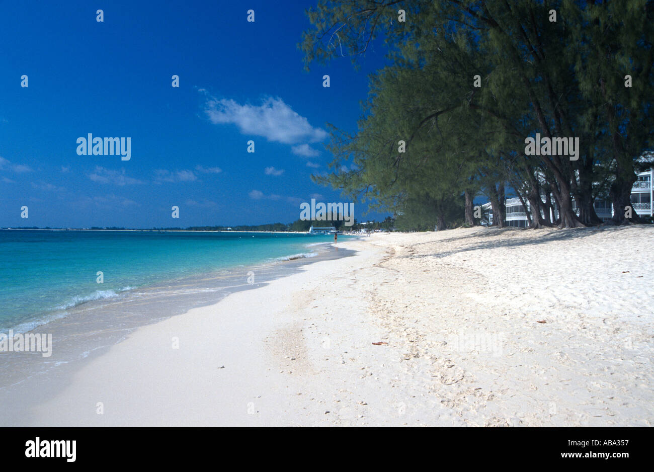 Seven Mile Beach Grand Cayman Caymans Islands BWI - Stock Image
