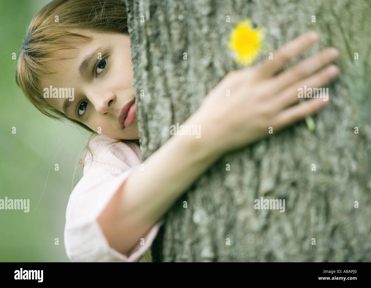 Girl with arm around tree, holding flower - Stock Image