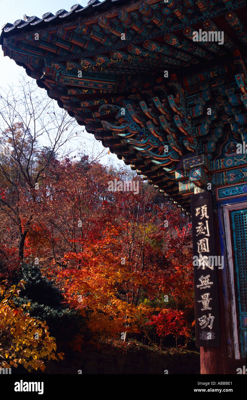 View of temple in Korea with Autumn Fall trees Hanguk Minsok Chon Gyeonggi do - Stock Image
