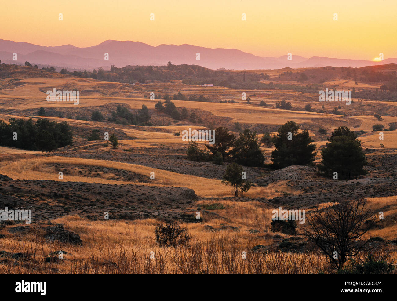 Landscape, Troodhos Foothills, Greek Cyprus - Stock Image