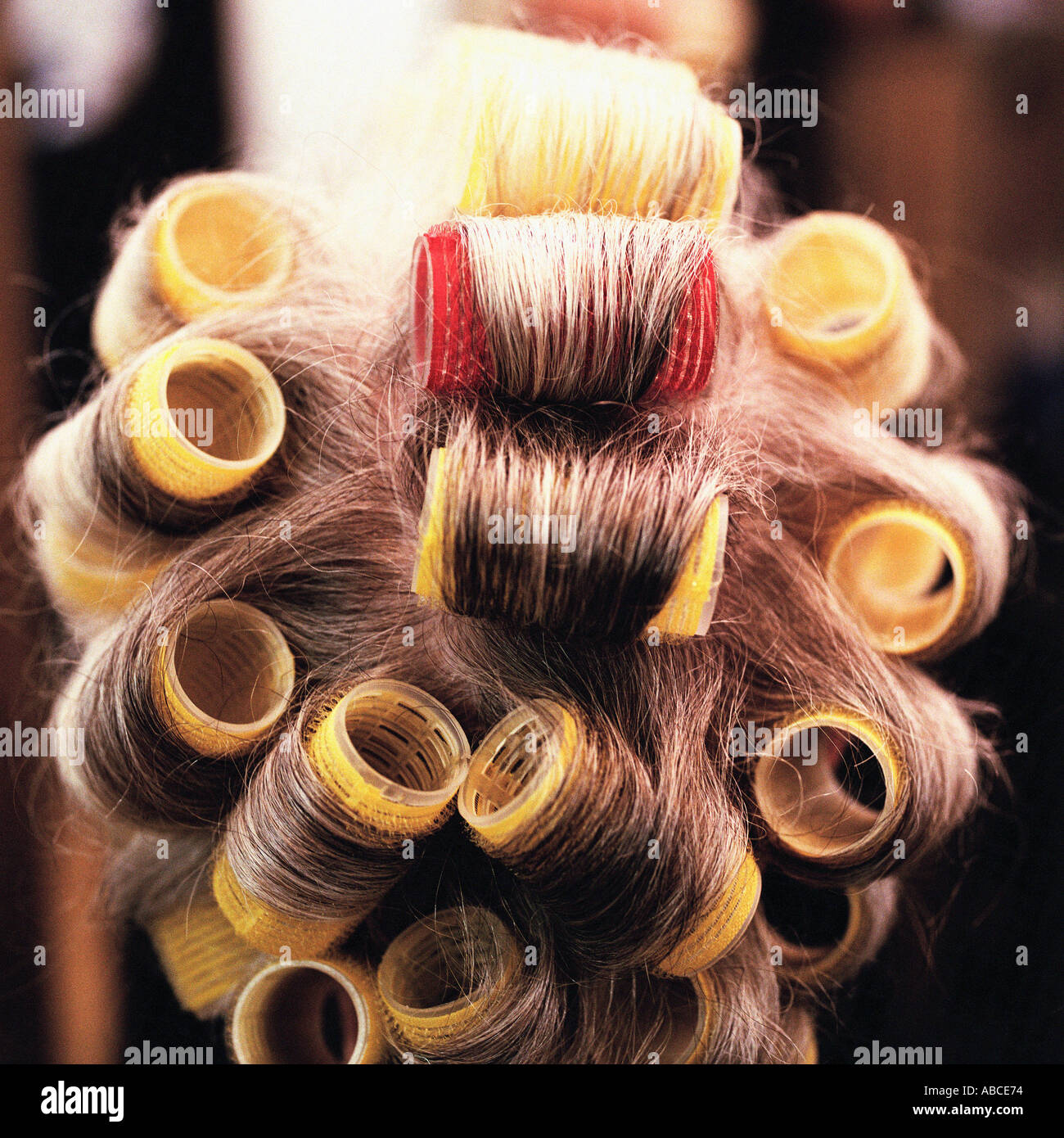 Womans hair in rollers - Stock Image