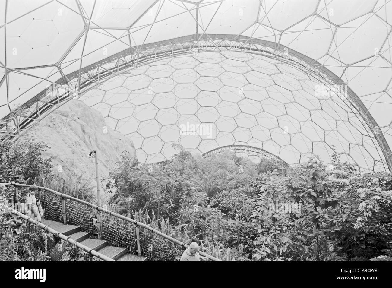 View Of The Structure At Eden Project St Austell Cornwall UK