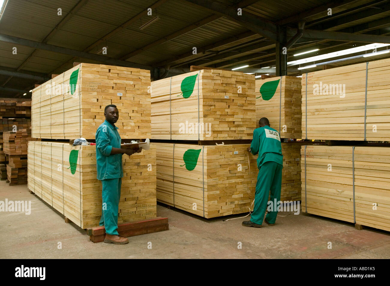 Sawmill Africa Stock Photos & Sawmill Africa Stock Images