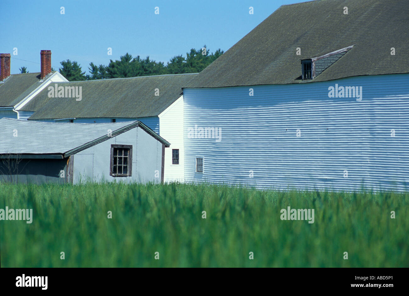 The 1890 s farmhouse and barn on the Meserve Farm in Scarborough Maine Spring Southern Maine - Stock Image