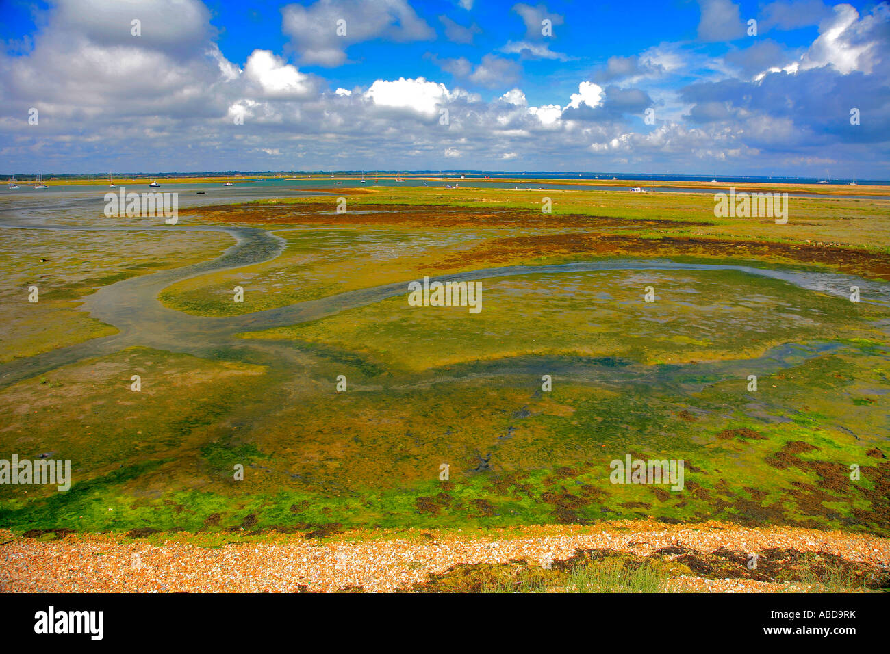Keyhaven Marshes, Hurst Point, Hurst Castle, the Solent, Hampshire England Britain UK - Stock Image
