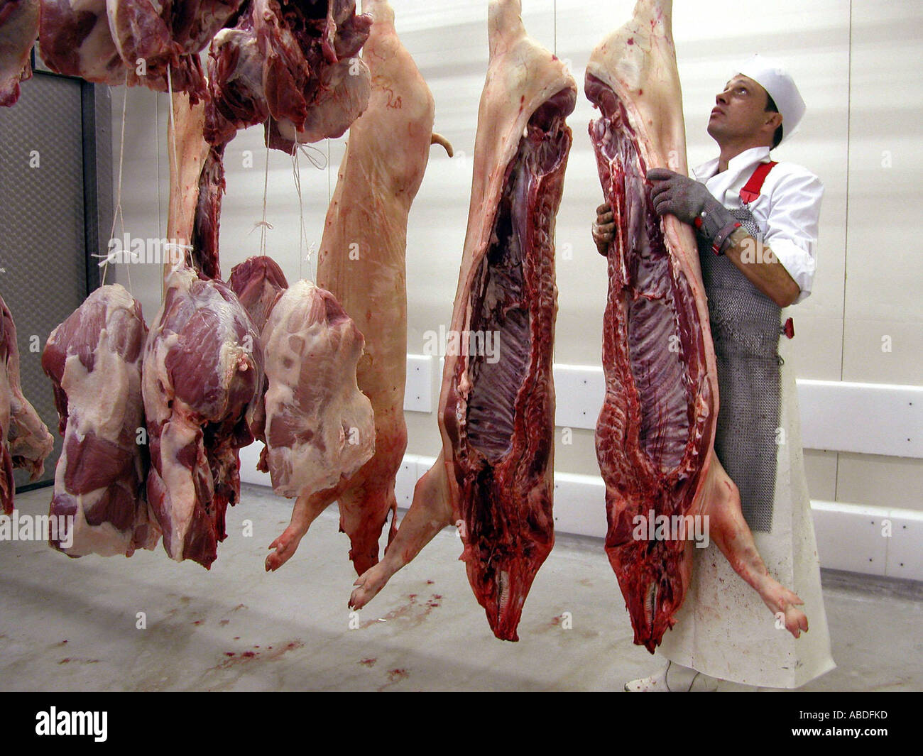 In the slaughter house - Stock Image