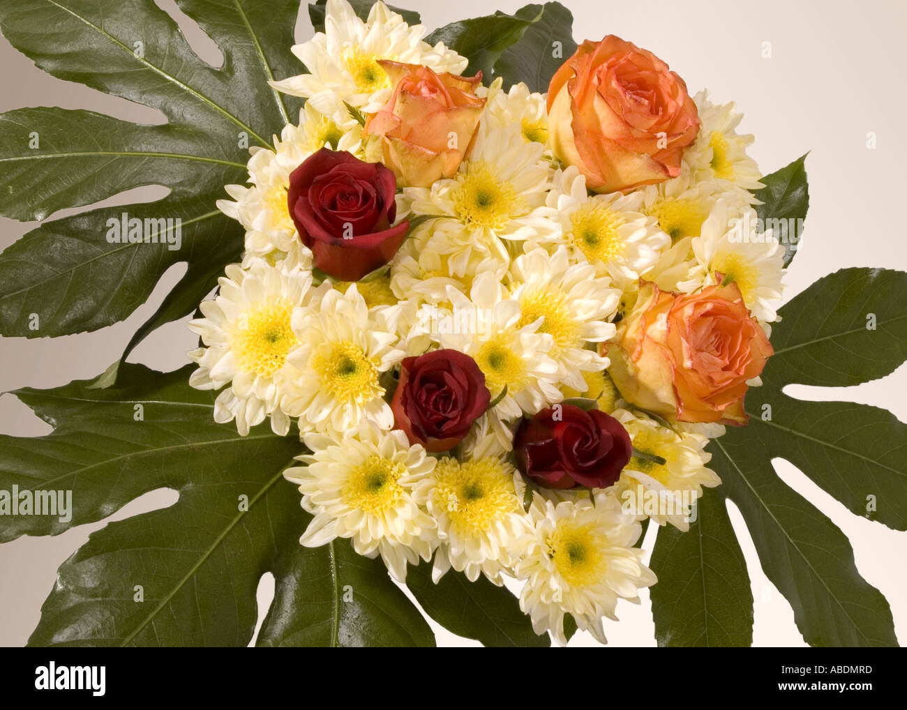 Flowers bouquet bunch of flowers stock photo 7349372 alamy flowers bouquet bunch of flowers izmirmasajfo
