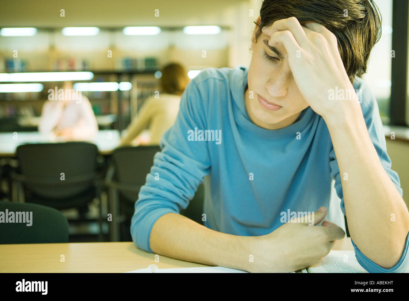 Male college student sitting in library, studying - Stock Image
