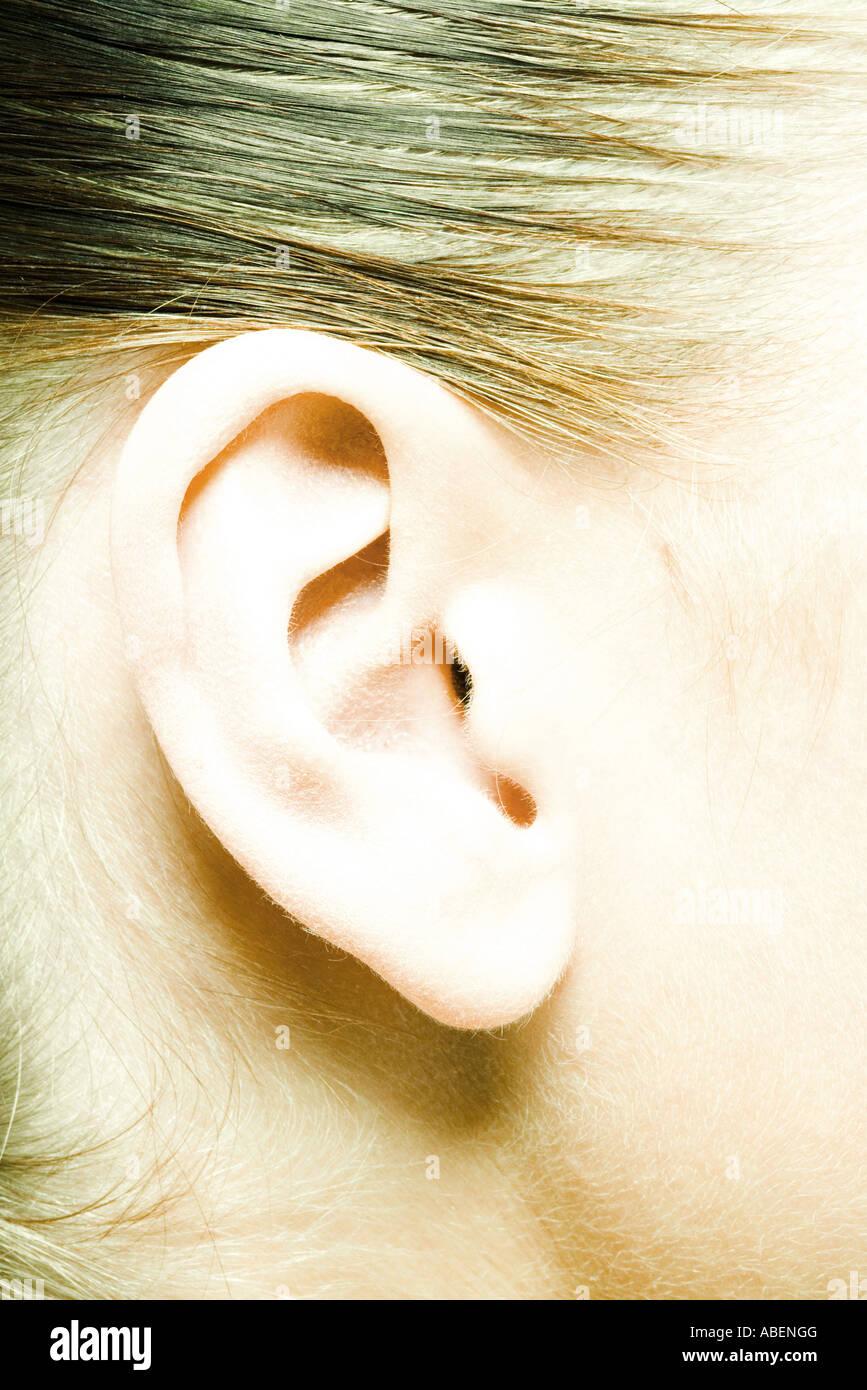 Female ear, extreme close-up - Stock Image
