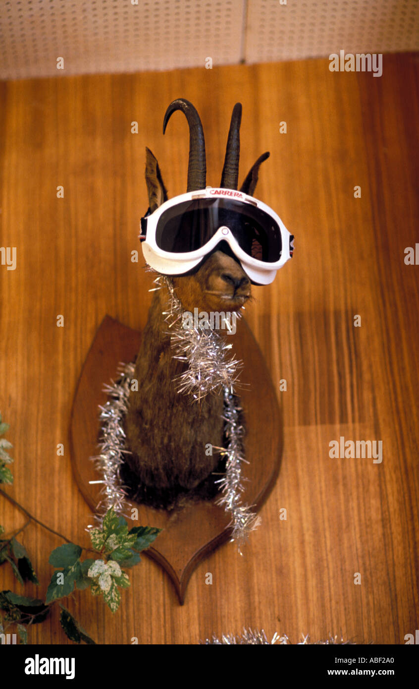 Wall mounted deer head with a pair of ski goggles on and some tinsel wrapped round its neck - Stock Image