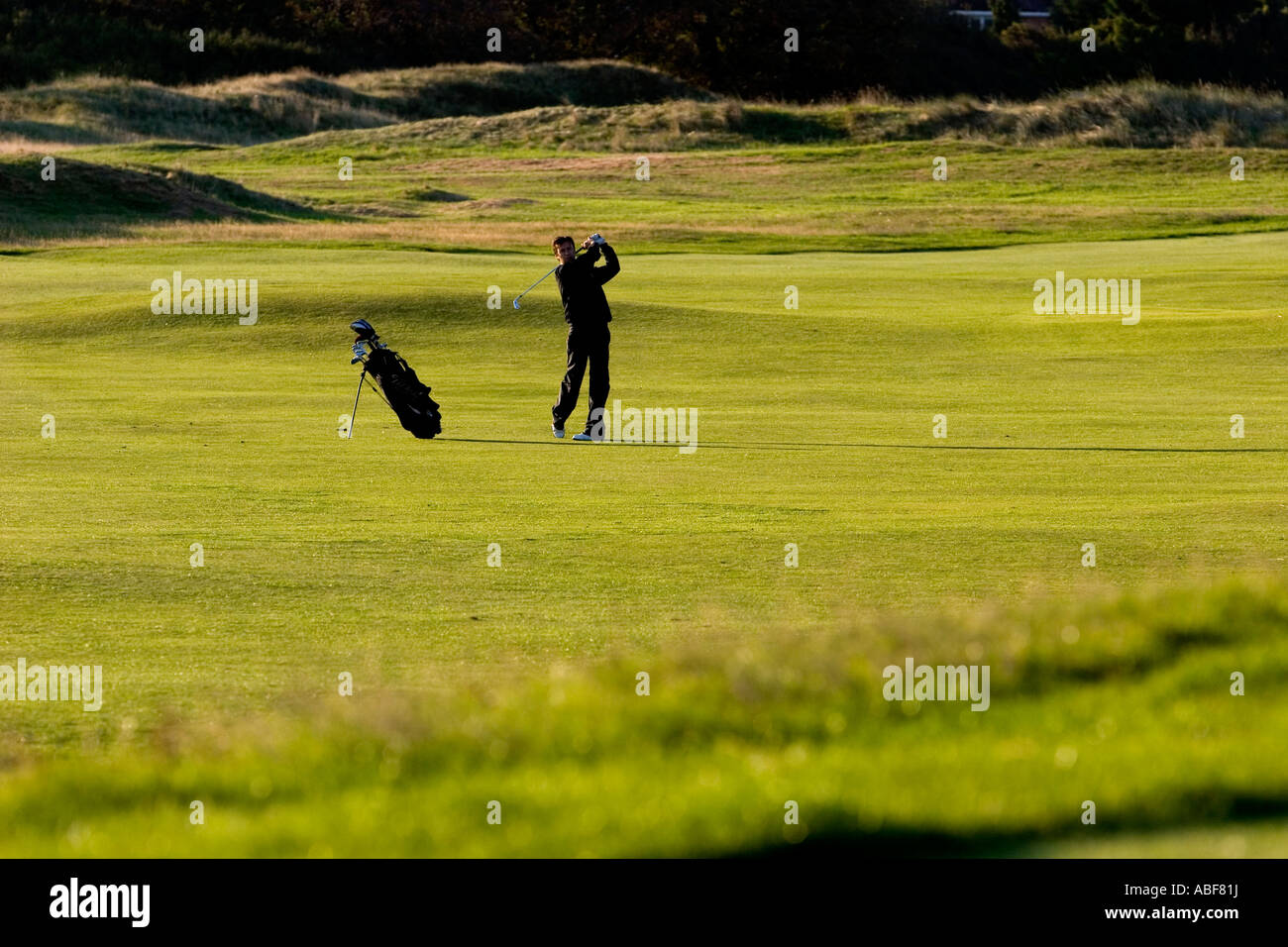 Golfer, approach shot. - Stock Image