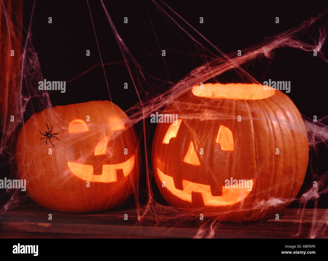 Two illuminated Jack O Lanterns celebrate Halloween amid a covering of spider webs on an old wood background - Stock Image