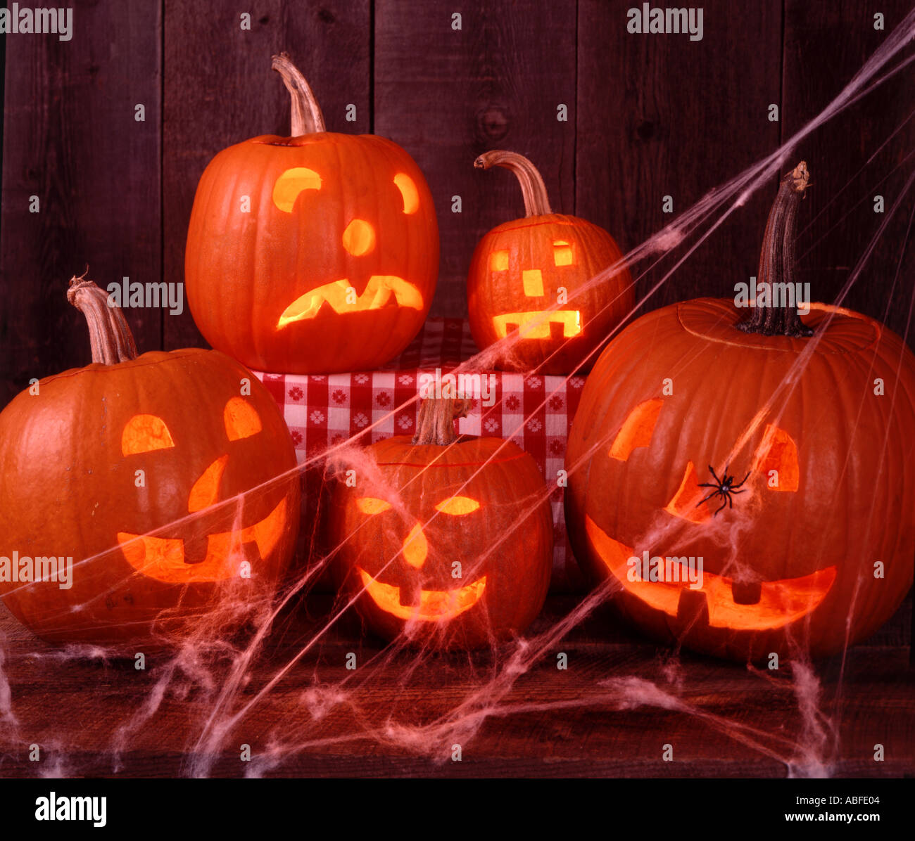 Five scary Halloween Jack O Lanterns draped with a spider and profuse spider webs - Stock Image