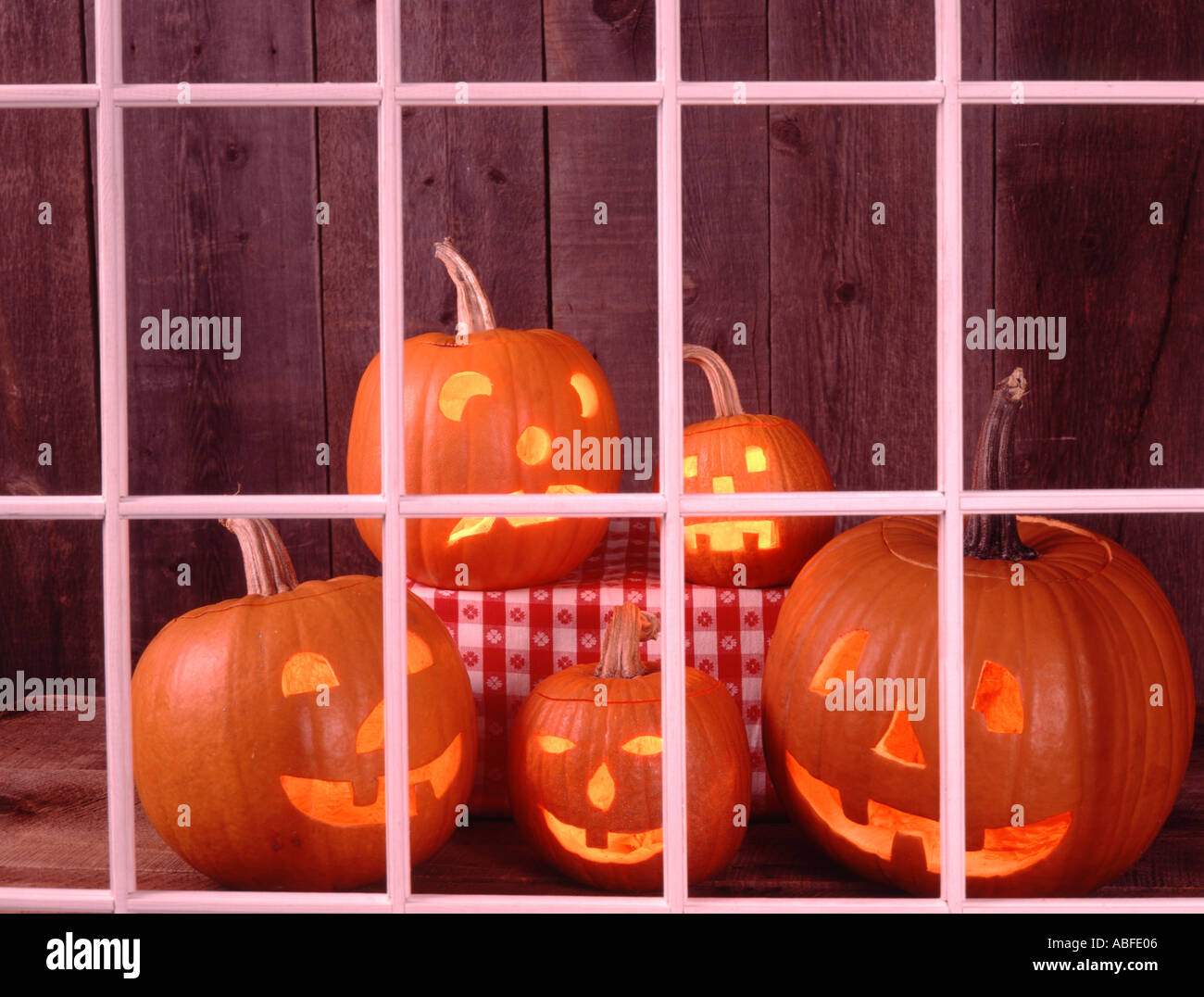 Five Halloween Jack O Lanterns on an old wood background look at the world from behind a white window framing - Stock Image
