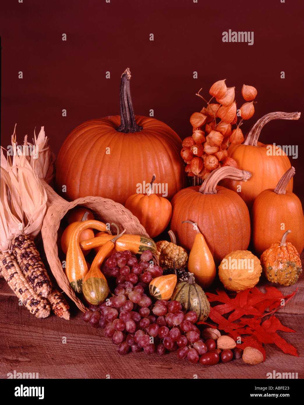 Harvest still life with cornucopia and autumn vegetables against a weathered barnwood background - Stock Image