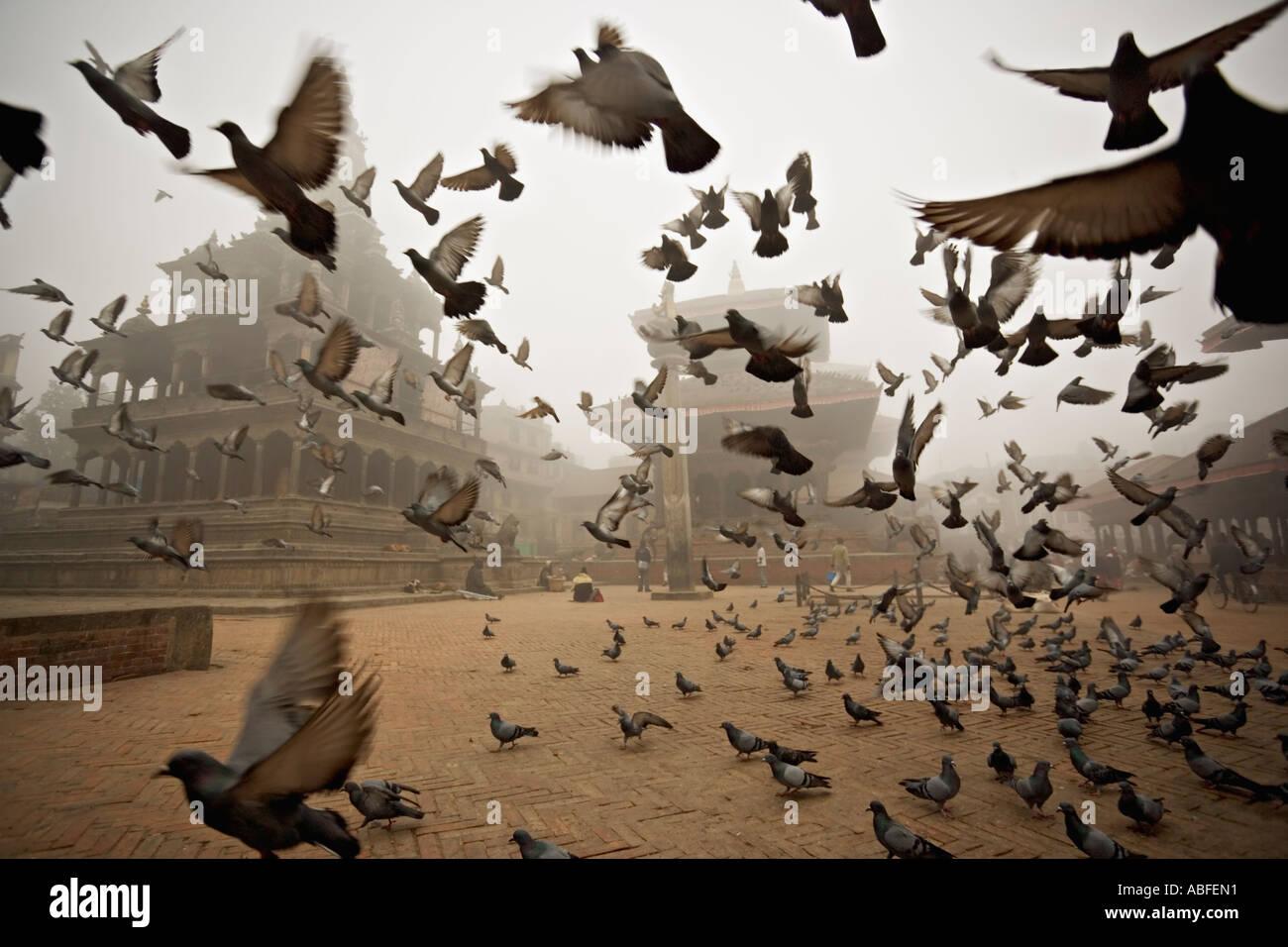 Winter dawn mist Patan Durbar Square Kathmandu Nepal - Stock Image