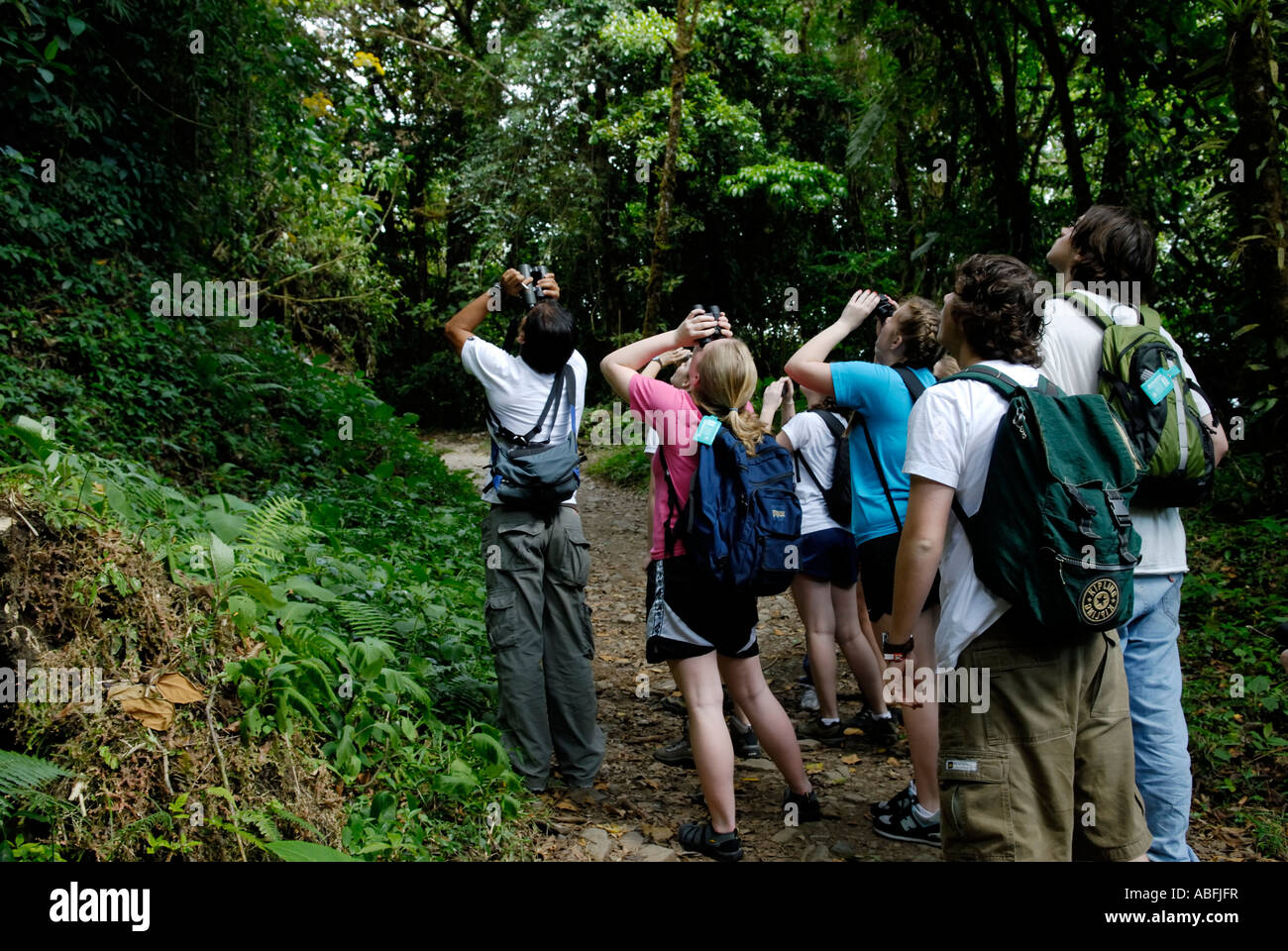 Young ecotourists on a student trip with a Costa Rican naturalist guide observing wildlife in the Monteverde Cloud - Stock Image