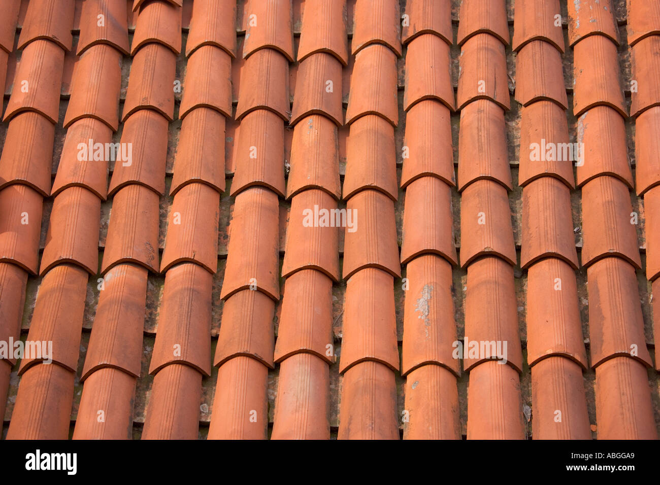 Terracotta roof tiles italy stock photo 4206760 alamy terracotta roof tiles italy dailygadgetfo Image collections