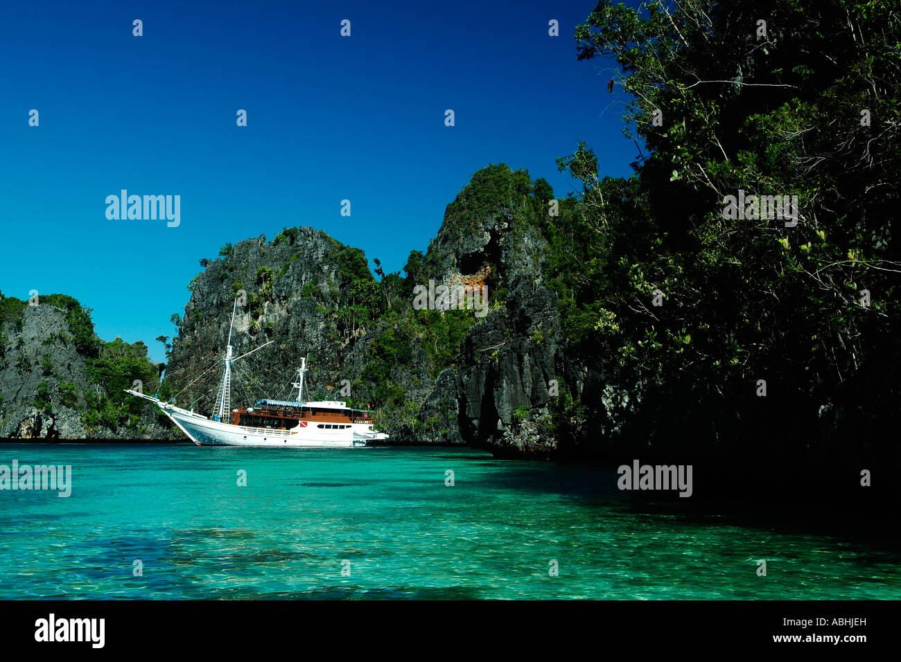 Small limestone island in Raja Ampat, Indonesia - Stock Image