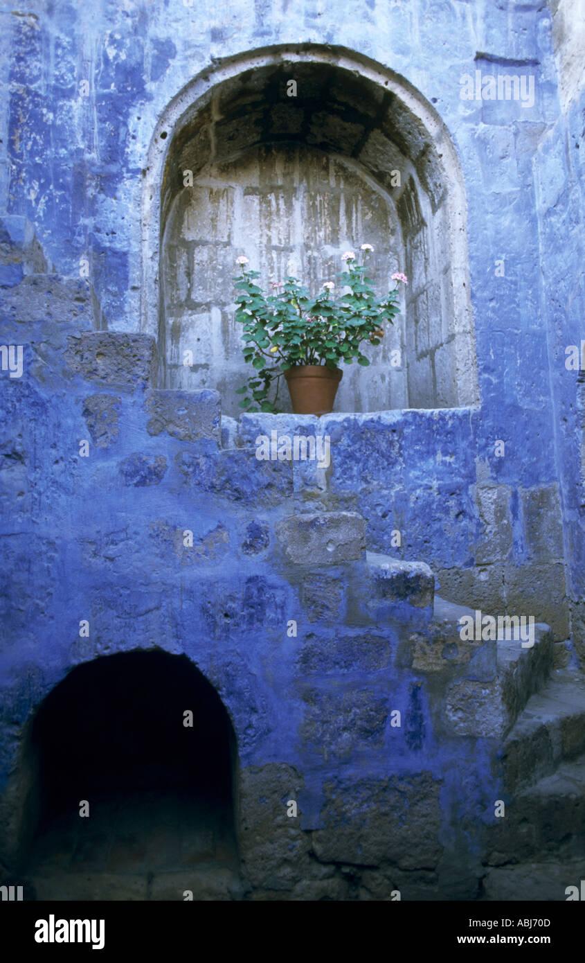 Arequipa, Peru. Plant in a pot in a stone alcove in a fading blue ...